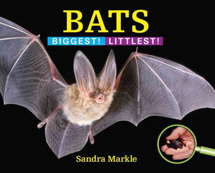 Bats By Markle, Sandra