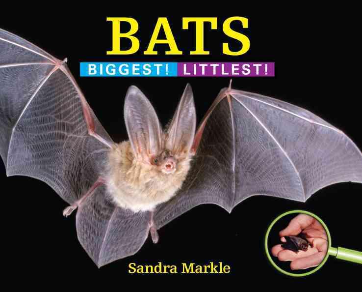 Bats By Markle, Sandra